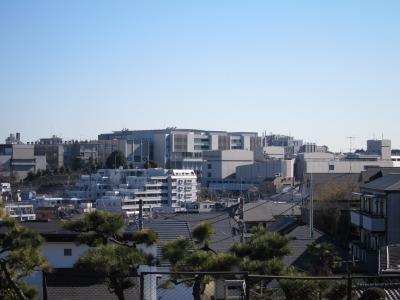 井田山から見た日吉キャンパス方面