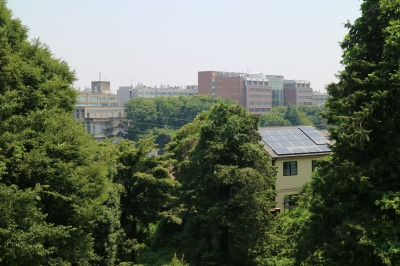 日吉キャンパスから見える矢上キャンパス