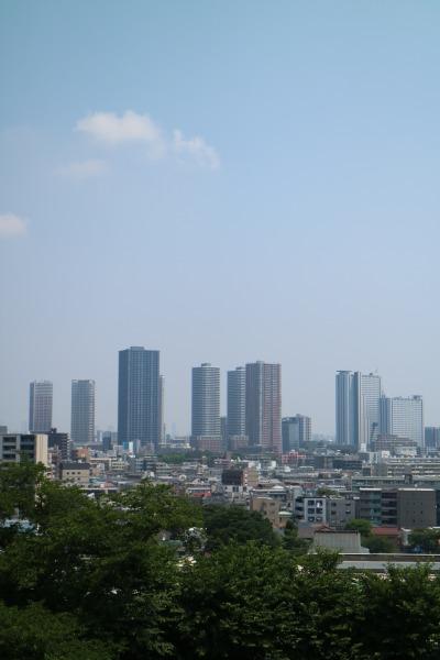 矢上キャンパスから見た武蔵小杉の高層ビル群