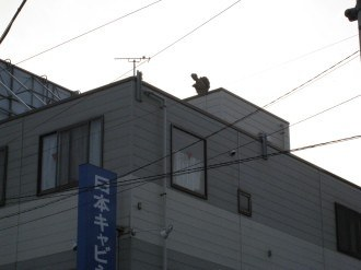 屋上に在りし日の二宮金次郎像
