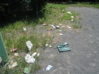 雑草周辺のゴミ