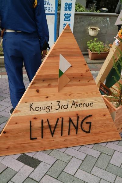 Kosugi 3rd Avenue LIVIVG