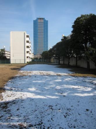 残された雪