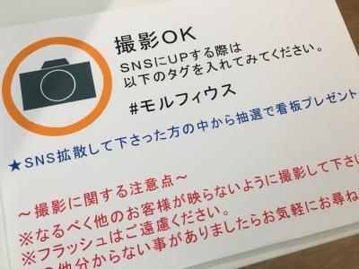「写真撮影OK」