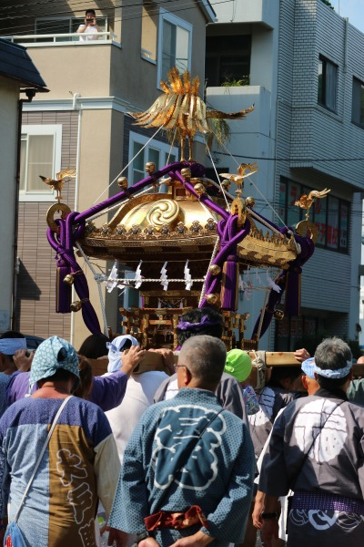 小杉神社に向かう大神輿