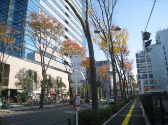 南武沿線道路(武蔵小杉タワープレイス付近)