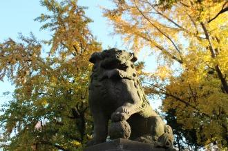 今井神社の狛犬