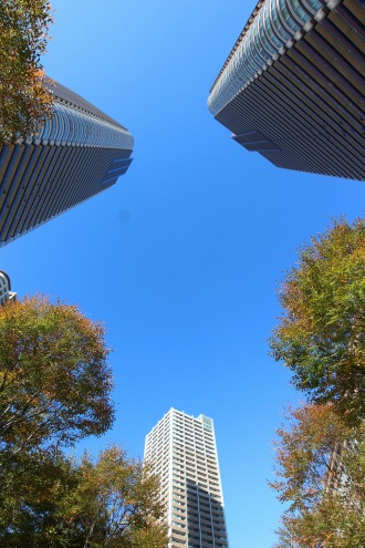 駅前のタワー・街路樹と青空
