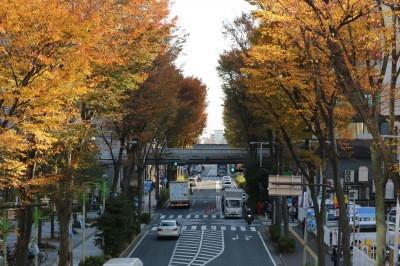 同じく、JR武蔵小杉駅方面