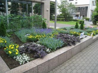 中原区役所の区民デザイン花壇