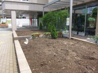 中原区役所前の花壇