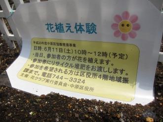 花植え体験開催のお知らせ