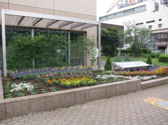 中原区役所の花壇