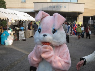 中原区役所のウサギちゃん
