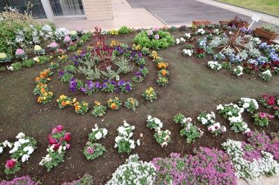 花植え体験後の花壇