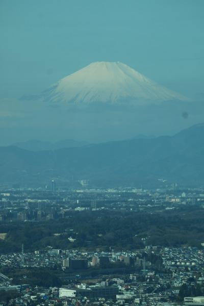 横浜の市街地と富士山