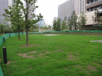 円形広場から、新駅方面