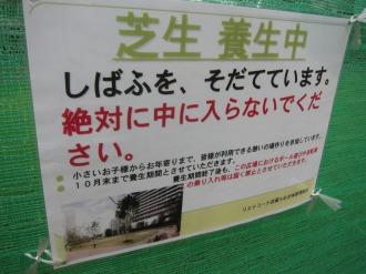 「芝生養生中」の告知
