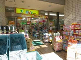 「どらっぐぱぱす」の既存店舗(月島店)