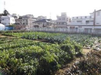 連携する高津区の農園