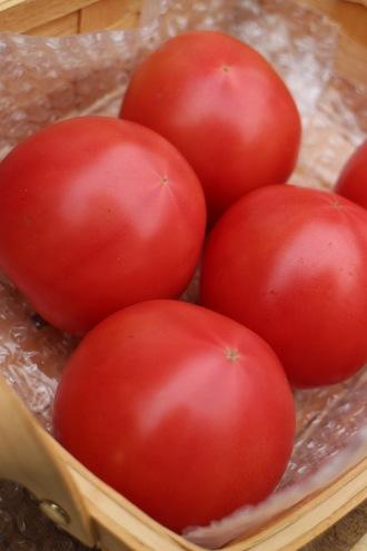 「矢澤農園」のトマト