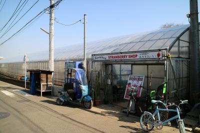 小泉農園ストロベリーショップ