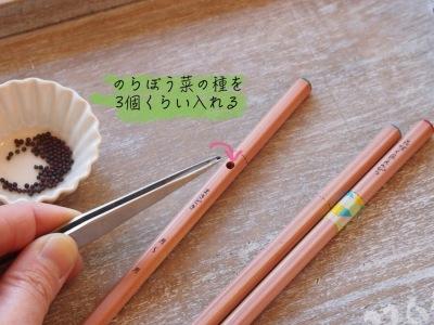 「のらぼう菜色えんぴつを作ろう!」ワークショップ