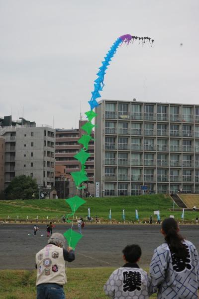 多摩川で見かける凧揚げ