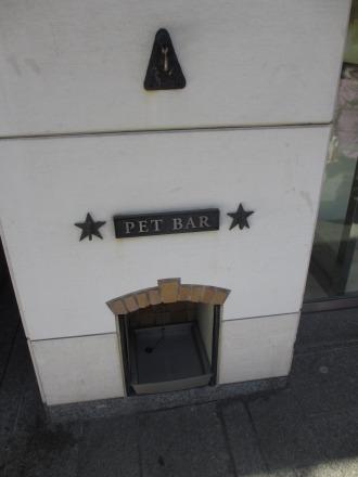 ペットの水飲み場
