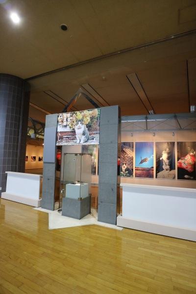 川崎市市民ミュージアムの企画展示スペース