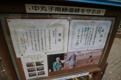 「中丸子南緑道を守る会」の表彰