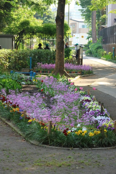 大きな花壇