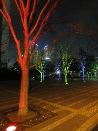 公開空地の街路樹ライトアップ