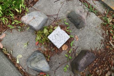 NEC玉川ルネッサンスシティ前の「水準点(水準基標)」
