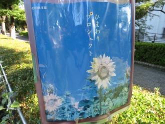DCI日本支部 「ひまわりプロジェクト」