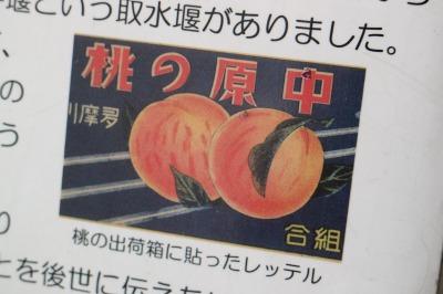 桃の出荷箱のレッテル
