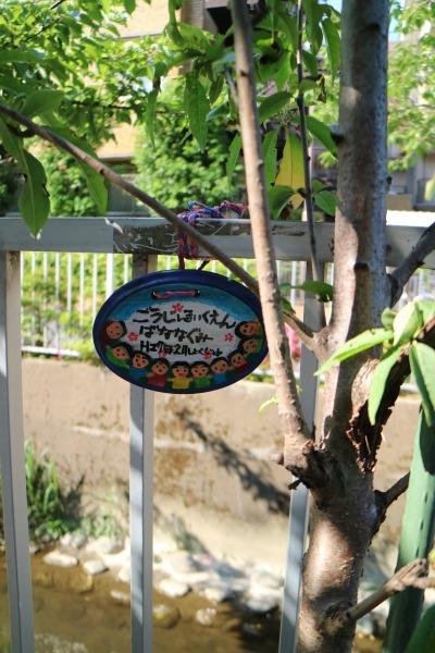 ごうじ保育園の植樹