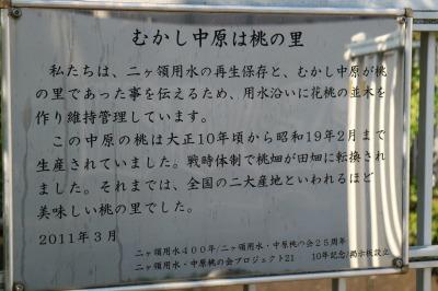 「中原桃の会」のメッセージ