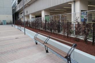 設置されたベンチ