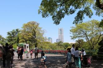野毛山動物園から見えたランドマークタワー