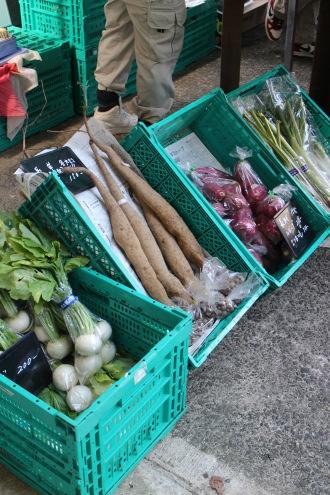 神奈川県内の農園の野菜