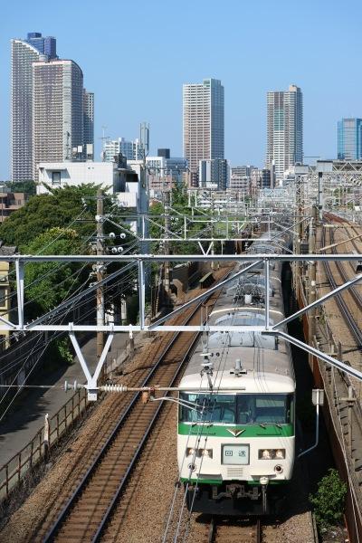 「美富士橋」から見る新幹線、湘南新宿ライン、横須賀線など