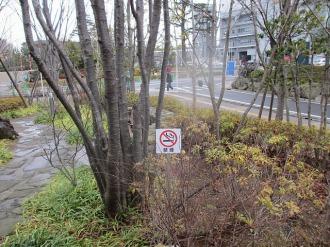 「ふれあいの丘」の禁煙標示塔