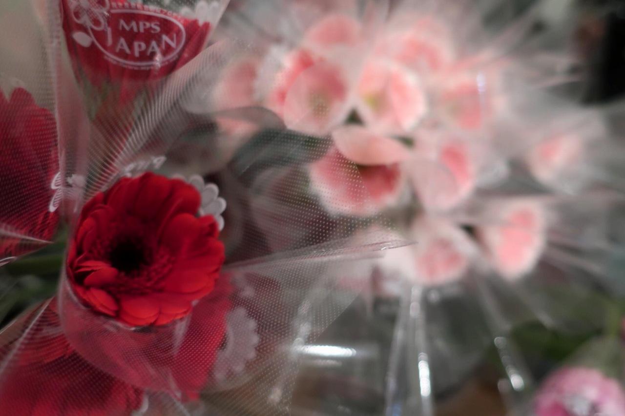 リレーショナルアート「花言葉」のガーベラ