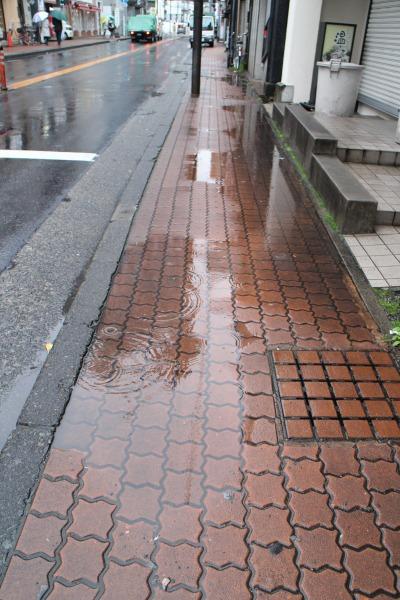 府中街道の歩道