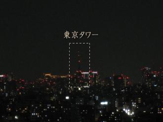 ライトダウンされた東京タワー(レジデンスの屋上から)