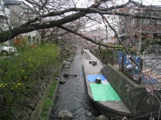 渋川のビニールシート