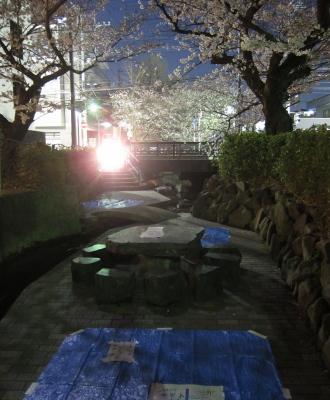 前夜の渋川のお花見スポット
