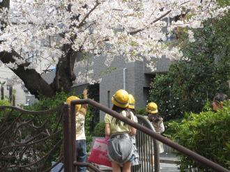 桜を散らして遊ぶ生徒たち