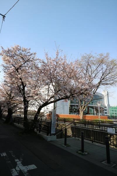 法政大学第二中・高等学校